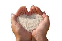 Rijst in de handen van de vrouw. Royalty-vrije Stock Foto's