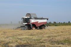 Rijst die krasnodar gebied oogsten Stock Afbeelding