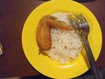 Rijst en gebraden kip Royalty-vrije Stock Foto