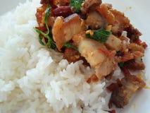 Rijst en gebraden scrispy varkensvlees met basilicum Stock Afbeelding