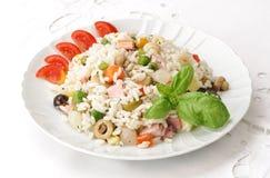 Rijst en groenten op plaat Stock Afbeelding
