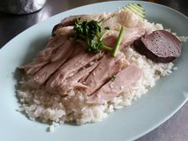 Rijst en kip stock foto