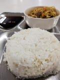 Rijst en noedelmaaltijd stock afbeeldingen