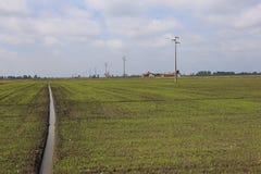 Rijst Italië Stock Afbeeldingen