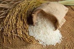 Rijst in jutezak Stock Fotografie