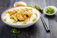 Rijst met kip en groenten Royalty-vrije Stock Fotografie
