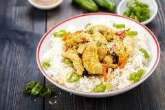 Rijst met kip en groenten Stock Fotografie