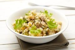 Rijst met varkensvlees, wortelen en spinazie Royalty-vrije Stock Afbeelding