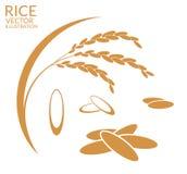 Rijst reeks vector illustratie