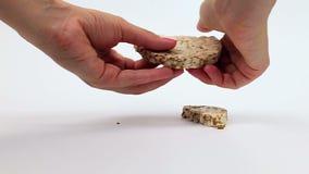 Rijstbrood op witte achtergrond stock footage