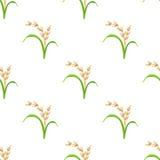 Rijstinstallatie, vegetarisch voedsel naadloos patroon Vector illustratie Royalty-vrije Stock Fotografie
