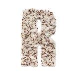 Rijstkorrel die een alfabetbrief R vormen Royalty-vrije Stock Afbeelding