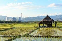 Rijstlandbouwbedrijf dichtbij elektrische centrale Royalty-vrije Stock Foto's