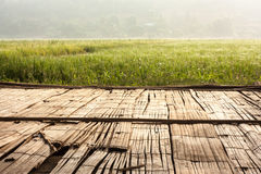 Rijstlandbouwbedrijf en oud geweven bamboe Stock Afbeeldingen