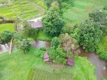 Rijstterras bij van het Parkchom van Doi Inthanon Nationaal de Leren riemdistrict Chiang Mai Province, Thailand in de mening van  royalty-vrije stock fotografie