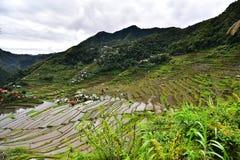 Rijstterrassen - Batad, Filippijnen stock afbeelding