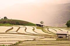 Rijstterrassen op de berg royalty-vrije stock afbeelding