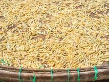 Rijstzaden op mand Royalty-vrije Stock Afbeelding