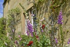 Rijtjeshuis Stock Fotografie