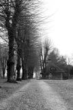 Rijweg en huis in park Stock Afbeeldingen