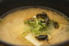 Rik och varm tofusoppa arkivfoto
