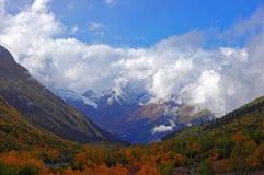 Rika färger av den guld- hösten i bergen Royaltyfria Foton