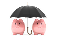 Rikedomskyddsbegrepp. Spargrisar under paraplyet Fotografering för Bildbyråer