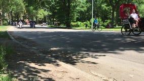 Rikschas im Central Park stock footage