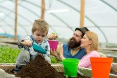 Rikt land land som är rikt med fertilt rikt land för växande växter familj i växthusarbete med rikt land familj royaltyfria foton