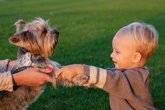 riktigt kamratskap b?st foreverv?nner lycklig barndom S?ta barndomminnen Barnlek med hunden för yorkshire terrier royaltyfri fotografi