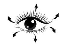 Riktning av att borsta ögonfrans stock illustrationer