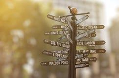 riktningar många signpost royaltyfri fotografi