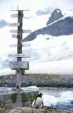 Riktningstecken och pingvin på den chilenska stationen, paradishamn, Antarktis Royaltyfria Bilder