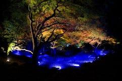 Rikugien Gardens  Light up Stock Images
