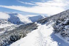 从Rila山,保加利亚的美好的冬天山风景 免版税库存图片