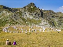 RILA山,保加利亚- 2012年8月08日:一个年轻人和孩子观看白色增殖比的成员Paneurhythmy圈子舞蹈  库存图片