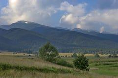 Rila Berg, Bulgarien Stockbilder