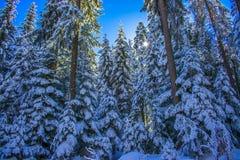 Rila góra w zimie obraz royalty free