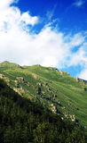 Rila Mountain - Variety Stock Photography