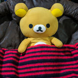 Rilakkuma Doll's covered by Red Blanket with Black Striped. Prepare to sleep. So cute Royalty Free Stock Photos