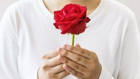 Rilassamento asiatico Rose Concept di freschezza del fiore della ragazza fotografia stock