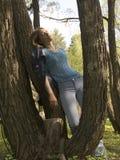 Rilassamento nella sosta Fotografia Stock