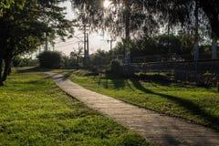 Rilassamento urbano della via delle piante presto fotografie stock