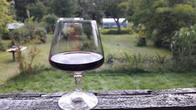 Rilassandosi con un vetro di vino rosso Fotografia Stock Libera da Diritti