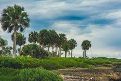 Rilassandosi sulla spiaggia tropicale a distanza di paradiso dentro Immagini Stock Libere da Diritti