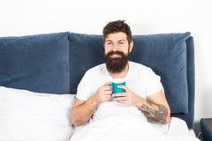 Rilassi e riposi i funzionamenti di umanità su caffè Caffè di rilassamento della bevanda della camera da letto dei pantaloni a vi fotografie stock libere da diritti