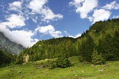 Rilievo di estate delle alpi svizzere Immagini Stock