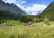Rilievo di estate delle alpi svizzere Fotografia Stock