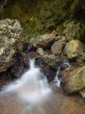 Rill от пещеры в лесе стоковая фотография rf
