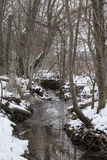 Rill. Brook river water flow Winter snow tree trees Deciduous natural environment eco ecology conservation Stock Images